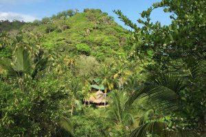 Vista al mar caribe Finca La Jorará ecohotel Palomino