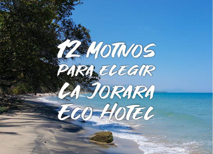Motivos para elegir La Jorara eco hotel