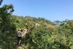 Tours cerca a Santa Marta, Parque Tayrona y Palomino
