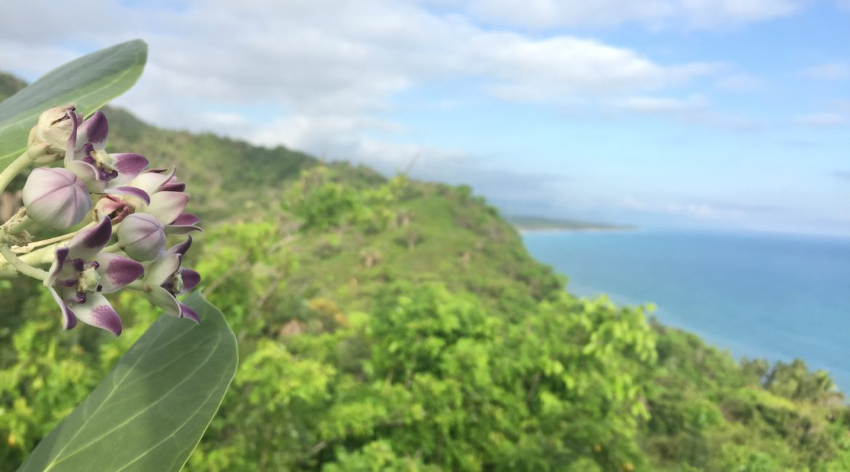 Inventario Ambiental de la Sierra Nevada de Santa Marta