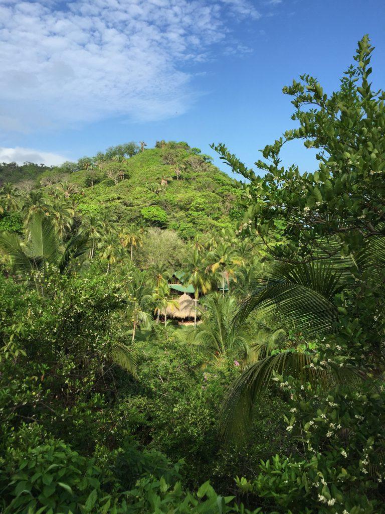 Alojamiento cerca de Palomino